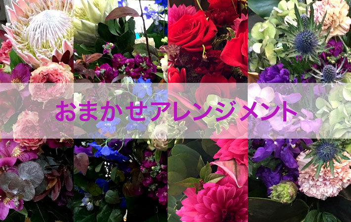 ネイティブフラワーイーダおまかせアレンジメント 楽屋花や開店祝いのお花におすすめ