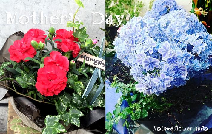 母の日に贈る花 寄せ植え カーネーション