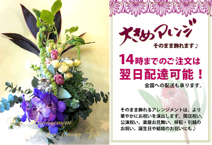 渋谷区本町に贈る大きめアレンジメント