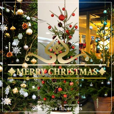 クリスマスツリー 二子玉川の花屋 ネイティブフラワーイーダ