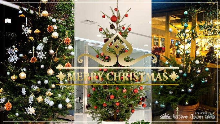 クリスマスツリー クリスマスフラワーギフト