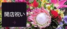 開店祝いの花 開店祝いスタンド花 東京