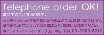 電話オーダー可能