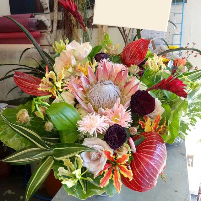 公演祝いの花 ピーチネイティブ 二子玉川の花屋 ネイティブフラワーイーダ