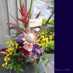 開店祝いのアレンジメント お祝い花 二子玉川の花屋 ネイティブフラワーイーダ ヘリコニアロケット