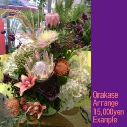 開店祝いのアレンジ花 二子玉川の花屋 ネイティブフラワーイーダ カンガルーポーとピンクッション