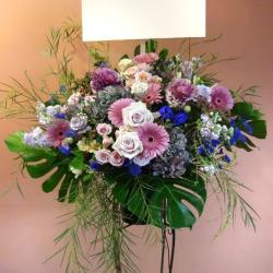 10月の花「ガーベラ」おすすめフラワーギフト