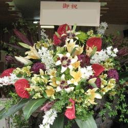 開店祝いのスタンド花 二子玉川の花屋 ネイティブフラワーイーダにお任せ下さい。