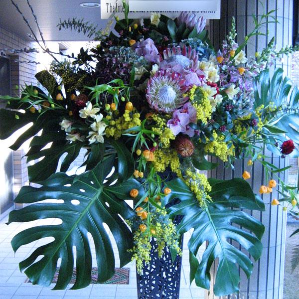 新装開店 お祝い花 スタンド花 東京 ネイティブフラワーイーダ