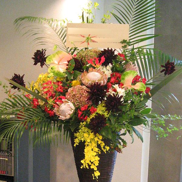 新装開店 お祝い花 スタンド花 東京 世田谷区 ネイティブフラワーイーダ トロピカル
