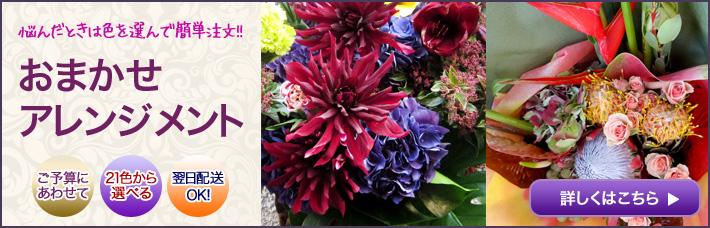 ネイティブフラワーイーダおまかせオーダーアレンジメント装花