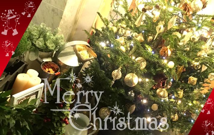 クリスマスツリー もみの木 二子玉川の花屋