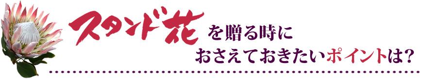 東京にスタンド花を贈るときにおさえておきたいポイント