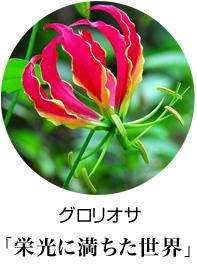 開店祝い スタンド花 グロリオサ 花言葉は栄光に満ちた世界