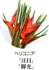 開店祝い スタンド花 ヘリコニア 花言葉は王者の注目、脚光