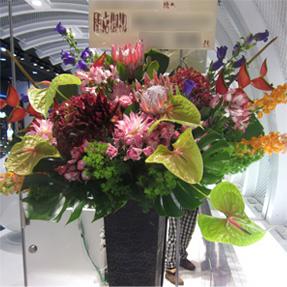開店祝いスタンド花 キングプロテアとビッグアンスリウム